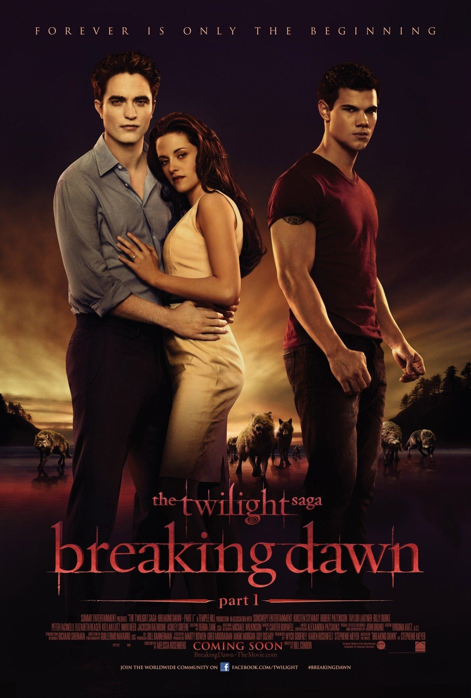 dal-libro-al-film-breaking-dawn-parte-1