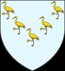 stemma-crane